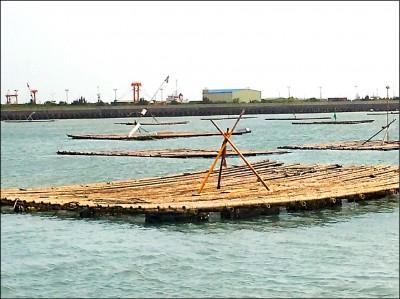 布袋漁港滿蚵棚 影響航行