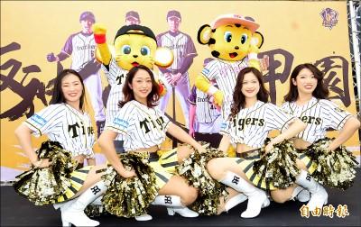 阪神啦啦隊女孩 今洲際開球