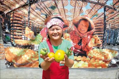 【食慾之秋,把作物帶上桌】秋季走入果園找柿做 新竹.新埔