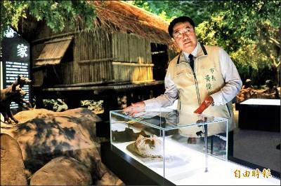台南市南科考古館週六開館 5千年前毛孩亮相
