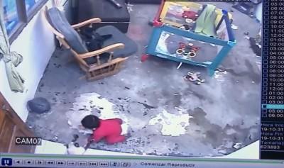 神貓!嬰孩傻傻往樓梯口爬 牠飛身救了小主人一命
