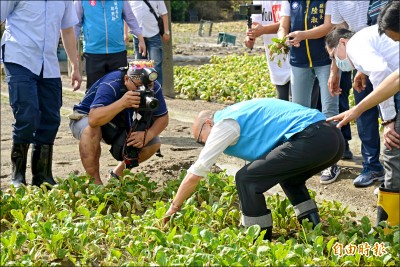缺席罷免說明會 韓國瑜進菜園看農損:攏壞去了