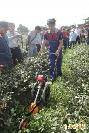農試所研發新型手推式剪草機
