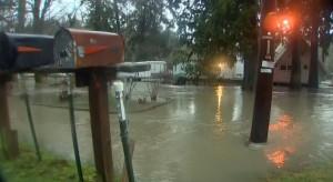 美國西北部豪雨不斷 各地災情頻傳