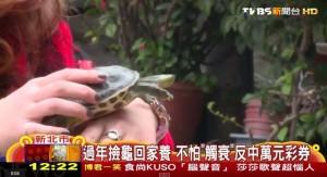 太神了!過年撿烏龜回家養 沒帶衰還刮中1萬元