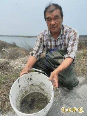 10年來最嚴重汙染 1400公頃魚塭變黑海