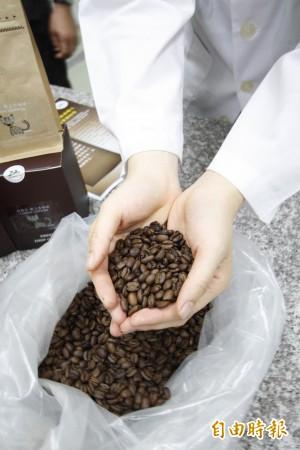 全世界最貴的貓屎咖啡 屏科大生物科技解密