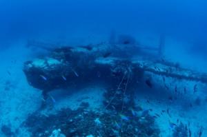 二戰終戰70週年 墜海戰機驚人照片曝光