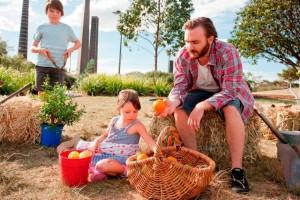 市議會表決通過 雪梨市府將砸重本設立「城市農場」
