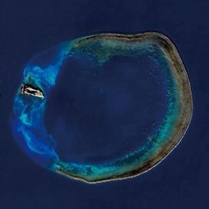 3千連署增設「海洋保育署」籲海巡軍警退出