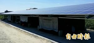 創意蓋太陽能菇寮 不到一年晉升百萬型農