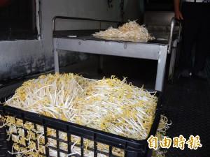 漂白豆芽菜賣10年 黑心業者輕判公益捐80萬