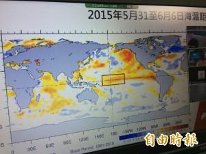 天氣風險預測:高溫少雨讓今夏只有「熱」