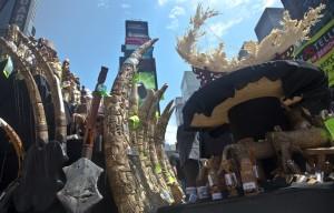 遏阻盜獵 美在時代廣場銷毀百萬元象牙製品