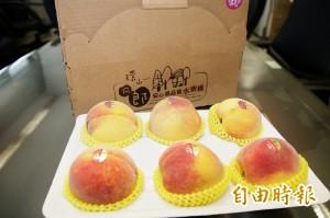 梨山水蜜桃好滋味 林佳龍念念不忘