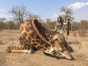 女獵人殺長頸鹿引公憤 上節目討拍