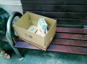 怎麼忍心?!紙箱裝2週大嬰兒 棄置公園椅子