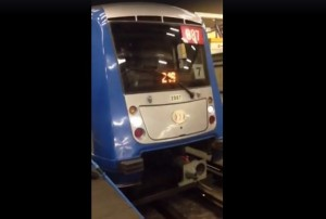 小狗狗誤闖軌道 智利地鐵急煞超溫馨
