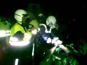 北市路樹倒地阻路  15員警徒手搶通道路