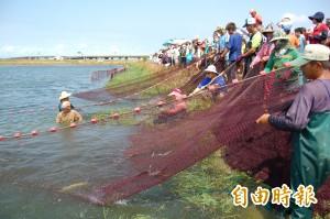 台南上演虱目魚捕撈實境秀 遊客驚呼連連