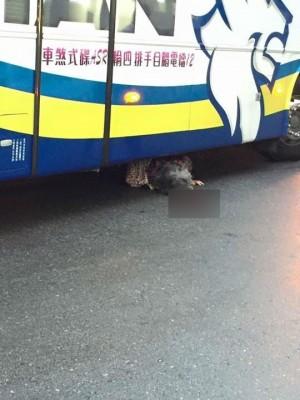 阿婆遭遊覽車輾過 卡車底仍有生命跡象