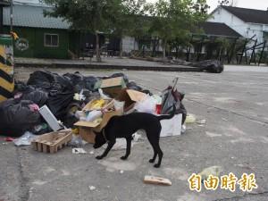 台東糖廠錄影活動過4天 垃圾未清惹民怨