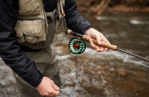 解決違法釣魚問題  英議會:殺光魚最快