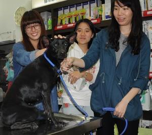 小黑狗受困活動中心4樓陽台  3名女學生搶救成功