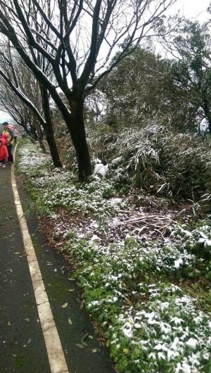 寒流好威 新北市三芝山區也見雪