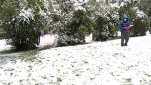 陽明山積雪10公分 4組民眾受困獲救