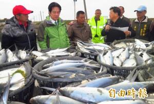 台南養殖漁業寒害受損估上億 賴清德:從寬從速認定