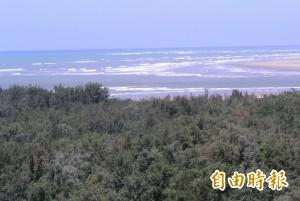 垃圾場設在台江國家公園內 環團要求暫緩