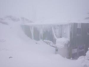 銀白世界!大陸冷氣團來襲 玉山降下瑞雪