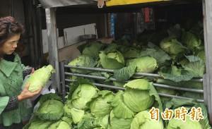 北市果菜到貨量增反漲價 市場處關注後續波動