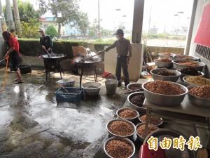 迎接白沙屯媽祖 北港民眾包八千顆粽子