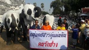 配合展演 泰國大象變熊貓惹議