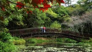 15處國家森林遊樂區 12歲以下4/2~4/5免費入園