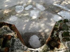 億載金城砲座被灌水泥 登革熱專家:有更好做法