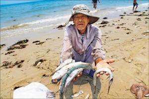 台塑越南廠被爆污染海岸 林飛帆籲各界關注