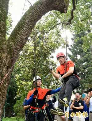 柯P體驗爬樹 軟掉直喊「好危險!」