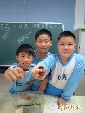 學童跟蟋蟀一起上課 感受大自然聲音