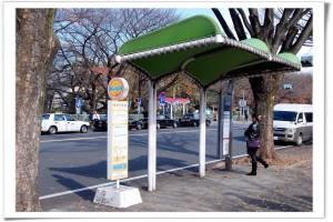 陷阱題!公車站旁有停車格,可停嗎?