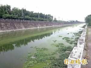 鹽水溪排水線污染 「抺茶綠」8公里