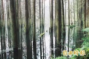 水漾森林意外頻傳 曾3星期內傳出3起失蹤案