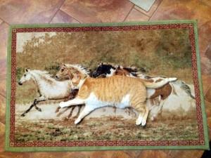 躲貓貓霸主! 喵星人躺地毯完美化身成「馬」