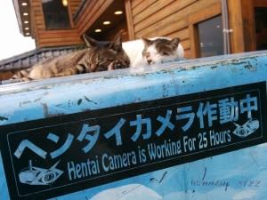 日本客遊九份 意外發現這個新景點...