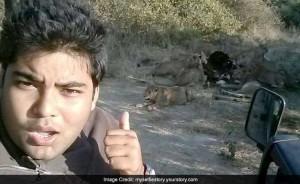民眾和獅子自拍已3人遭咬死 印度官方提警訊