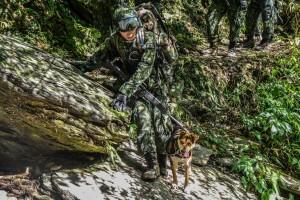 不是所有軍人都虐犬  網友分享特戰隊軍犬感人故事