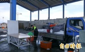 花蓮區漁會重啟漁貨拍賣 13日邀民眾「出價」