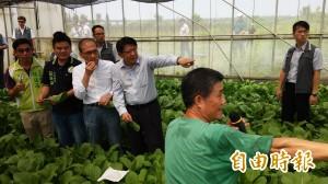 台灣有機農業面積 林全:明年要達1萬公頃